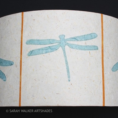 Half moon dragonflies