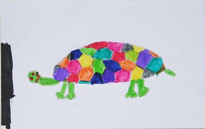 Vain-tortoise