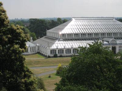 Kew-glasshouse