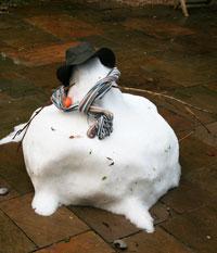 Snowman-18-Jan