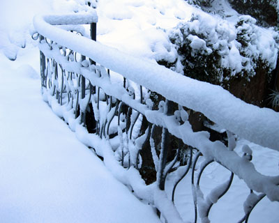 Fence-in-snow