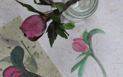 Three Takes …. on a Hellebore